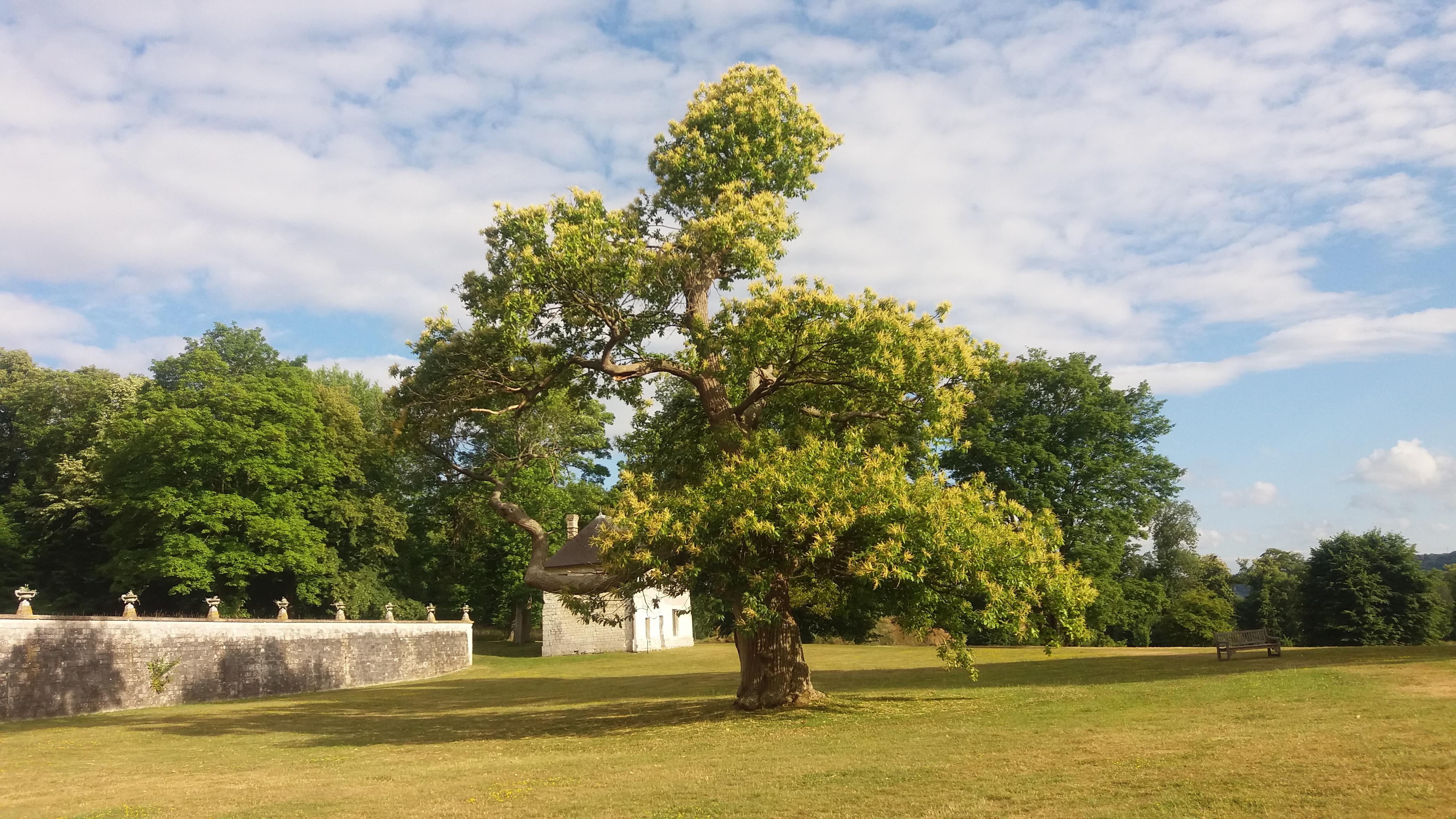 Parc de l'abbaye